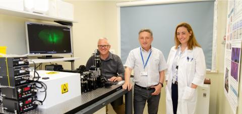 SPIM Microscopy